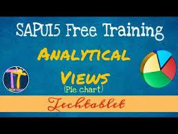 Sapui5 Pie Chart Example 20 Analytical View Pie Chart Sapui5 Fiori Tutorial Techtablet Varun Rao
