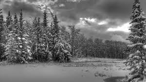Znalezione obrazy dla zapytania winter black and white