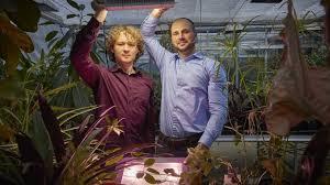 Bilberry Entwickelt LED Leuchten Für Pflanzen Und Damit Ein Neues  Geschäftsfeld
