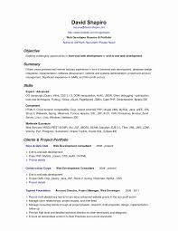Resume Java Sample For Years Experience In Junior Test Engineer