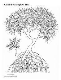 Mangrove Tree Coloring Page