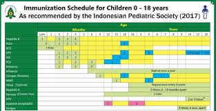 Immunization Schedule 2019 Chart Vaccination For Children In Indonesia Things You Need To