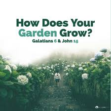 how does your garden grow garden jpg