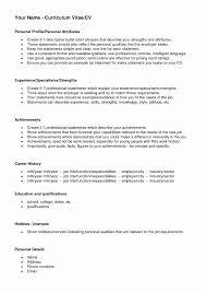 Sample Profile Statement For Resume Sample Profile for Resume Luxury Performance Profile Resume Resume 79