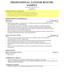 Resume Profile Summary Sample