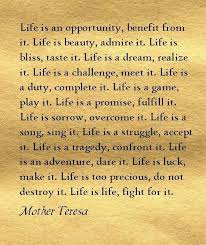 Favorite Quote About Life Enchanting My New Favorite Quote Mother Teresa Love Pinterest Mother