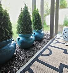 three evergreens in large planters sit on dark mulch next to a lovely patio with an