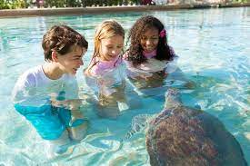 30 best family vacations amazing