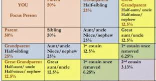 Dna Chart For Half Siblings Debs Delvings In Genealogy Percentage Shared Atdna Chart