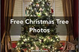 1000 Great Christmas Tree Photos Pexels Free Stock Photos