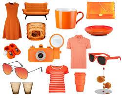 Image result for oranje artikelen nl
