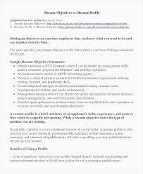 Customer Service Goals Examples - Recordplayerorchestra.com