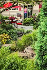 a lush rain garden in a small suburban chicago backyard saves water reduces pollution and