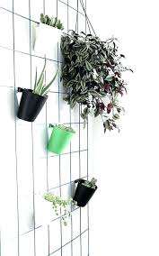 plant holders for wall