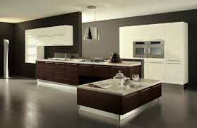 Modern Kitchen Idea New Ideas Modern Kitchen Stylish And Unique Modern Kitchen Idea