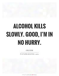 Alcoholic Quotes Inspiration Alcoholic Quotes Interesting About Alcohol Gorgeous Best 48 Ideas