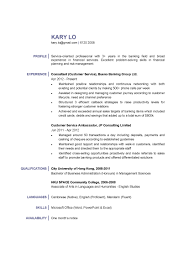 Profile Resume Examples For Customer Service Floating Cityorg
