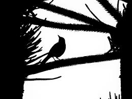 картинки силуэт крыло черное и белое орел монохромный эскиз