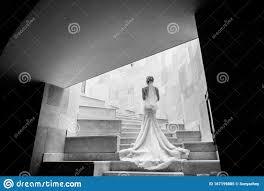 Aber ich kaufe ein brautkleid. Stilvolle Braut Auf Treppen Im Hotel Ruckansicht Schone Frau In Luxuriosem Weissem Kleid Brautkleid Kreatives Schwarzweissfoto Stockbild Bild Von Hotel Weissem 167199885