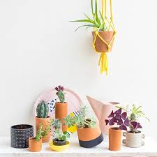 decorate the office. Why Is It Good To Decorate The Office With Plants? 3 Reasons