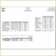 Free Paystub Templates Fascinating Pay Stub Samples Templates Vaydileeuforicco