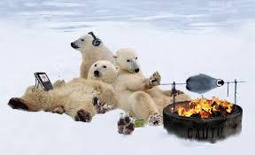 """Résultat de recherche d'images pour """"Gifs oursons polaires"""""""