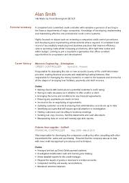 Made Up Resume] Made Resume Resumes And Cv Templates Ready Made .