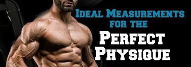Bodybuilding Body Measurement Chart Ideal Measurements For A Bodybuilding Physique Lee