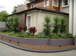 Small Picture 1221 best Succulent GARDEN images on Pinterest Gardens