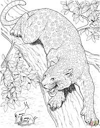 Small Picture 383 best coloring animals images on Pinterest Coloring books