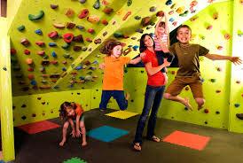 kids rock climbing wall holds