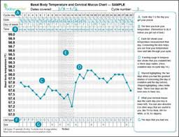 Charting Basal Body Temperatures Baby Gizmo