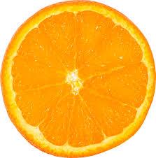 orange png. fruit, orange, slice, png, transparent orange png i