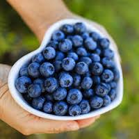 Blauwe bessen vitamine