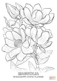 Small Picture Mississippi State Flower coloring page Free Printable Coloring Pages