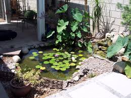 Lawn U0026 Garden  Natural Look Backyard Koi Fish Ponds Designs Small Small Ponds In Backyard