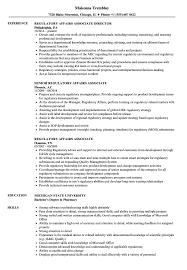 Regulatory Affairs Associate Resume Samples Velvet Jobs