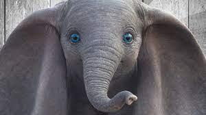 """Dumbo"""": FSK gibt Altersfreigabe für Disney-Realverfilmung bekannt - Kino  News - FILMSTARTS.de"""