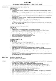 Ui Developer Resume Senior UI Developer Resume Samples Velvet Jobs 20