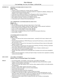 Customers Service Job Description Customer Service Executive Resume Samples Velvet Jobs