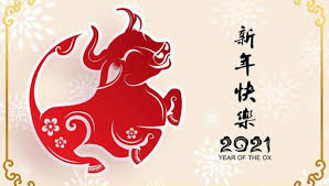 2020 was both a leap year and the year of the rat, which is a combination of chaos for the. S46nbflccwc8xm
