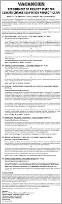 Procurement Specialist Project Accountant Project Monitoring And