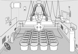 basement grow room design. Basement Grow Room Design L