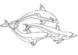 Animali Marini Immagine Da Colorare N 14267 Cartoni Da Colorare
