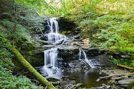 Check spelling or type a new query. The Ricketts Glen Challenge Discovernepa