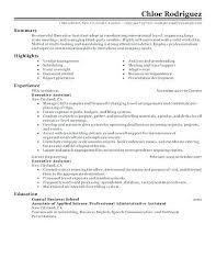 Good Resume Summary Examples Great Resume Summary Great Resume ...