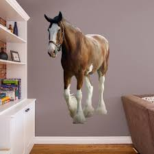 clydesdale fathead