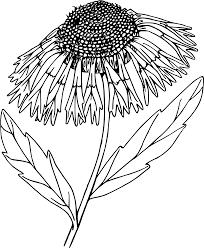 blanket clipart black and white. blanket flower clipart black and white