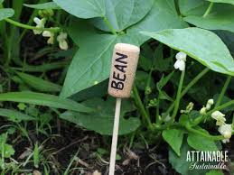 these diy garden markers are a snap to make