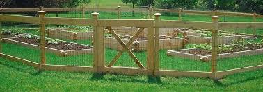 Full Image for Easy Vegetable Garden Fence Ideas Vegetable Garden Fence  Ideas Simple Vegetable Garden Fence ...